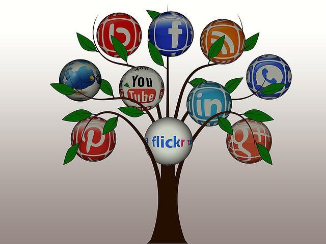Arbre des réseaux sociaux